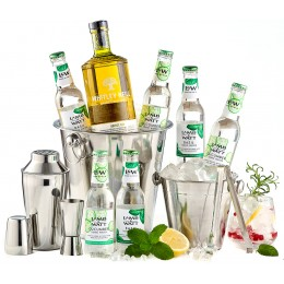 Pachet Handcrafted Gin Whitley Neill Party Kit