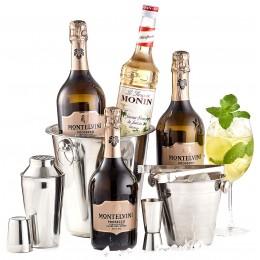 Pachet Hugo Cocktail Party Kit