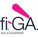 fi-Ga