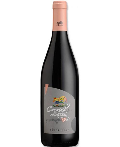 Recas Cocosul Dintre Vii Pinot Noir 0.75L BAX